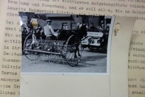 Trennblätter_Archivschachtel-Slg. Fragebögen (1)_02-rück2